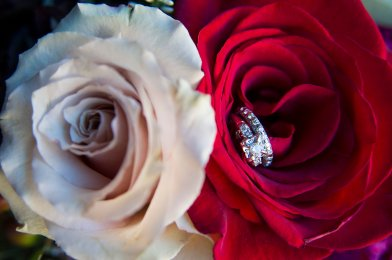 Another detail shot of my engagement ring and wedding band.